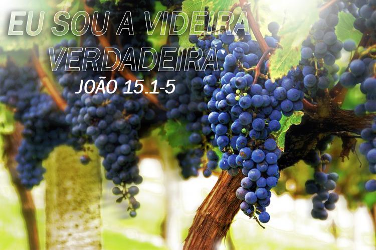Resultado de imagem para João 15:1,4,5